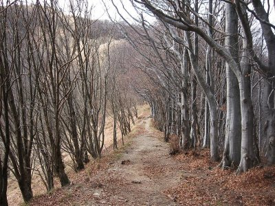 Escursione Parco dell' Antola in Mountain Bike