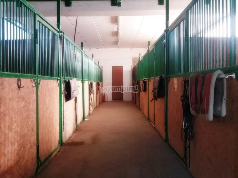 the riding school