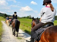 Passeggiata a cavallo nell'entroterra