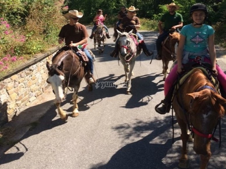 Passeggiata a cavallo lungo l'Alta Via del Golfo
