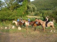 Horse ride of 3h Castel Madama - Rome