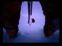 Alpinismo con libravventura