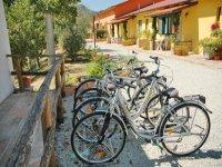 Servizio noleggio biciclette