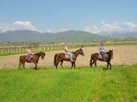 Passeggiata nella campagna piemontese