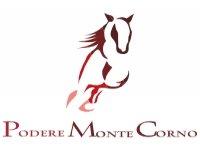 Podere Montecorno