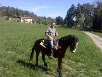 Passeggiata a cavallo Parco del Ticino 5 ore