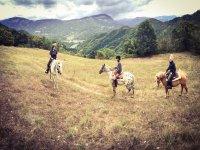 Sulle montagne