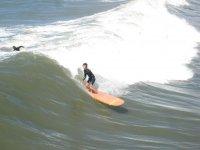 Lezione di Surf in gruppo (2 ore), Pietrasanta
