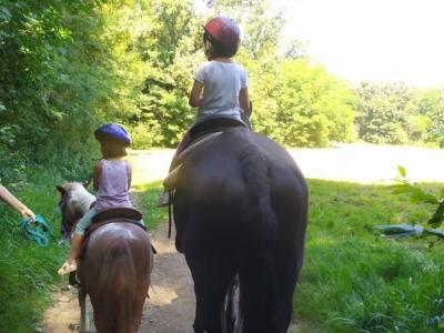 Passeggiata a cavallo a Solbiate di 1 ora