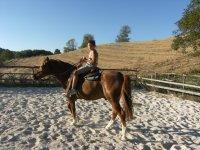 Passeggiata a cavallo San Giuliano del Sannio 1e30