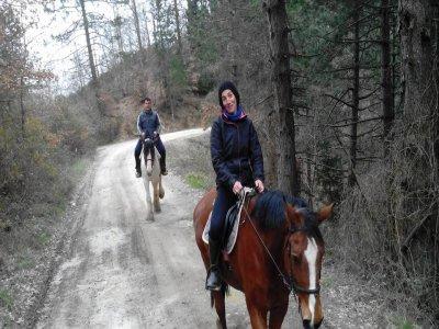 Passeggiata a cavallo con pranzo Pratovecchio 3ore