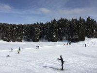 Praticando lo sci