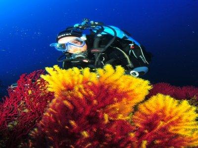 Circolo Ortona Sub Diving