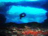 fondo marino con sub