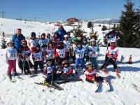 Sugli sci in compagnia