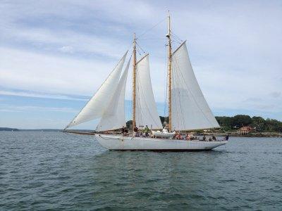 Corso di vela mezza giornata ad Ostia