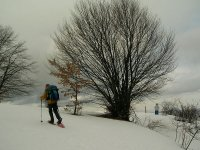 Camminando per le nevi