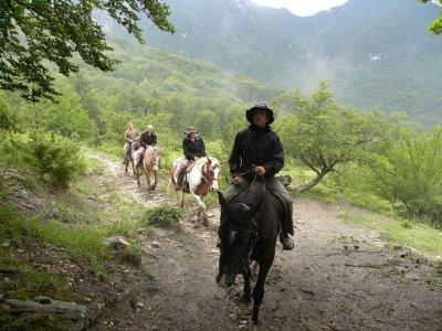 La Betulla Quality Food & Trekking Passeggiate a Cavallo