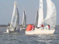 le regate di Carloforte Sail Charter