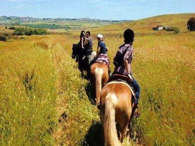 Escursione a cavallo Via del grano, Matera (2h)