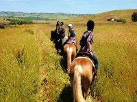 A cavallo sulla via del grano