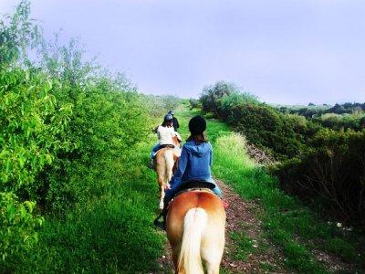 Escursione a cavallo Canyon della Gravina (3h)