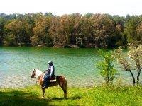 Escursione cavallo Lago Argentato, Matera (4h)