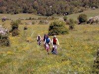 Escursione in Mountain Bike, Parco della Murgia