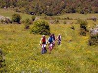 In mountain bike nella Murgia