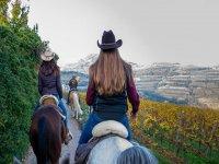 A cavallo duante una bella giornata autunnale