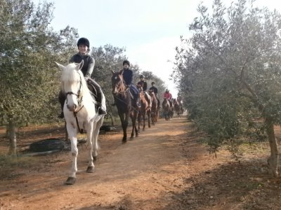 Horse riding tour, sea and countryside in Fasano of 1h30