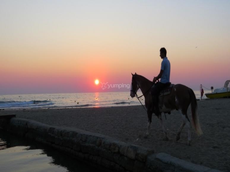 Escursione a cavallo sulla sabbia