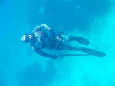 Battuta di pesca subacquea nel Salento 5 ore