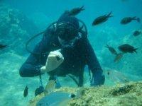 Diving in Basilicata