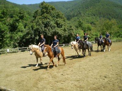 Trekking di 2 giorni con bambini sui pony, Rincine