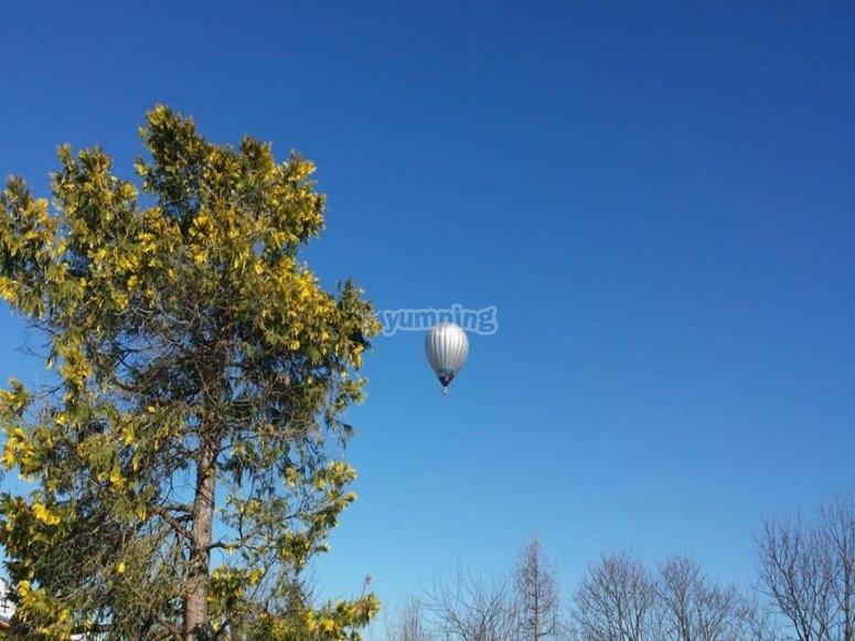 In volo nel cielo azzurro