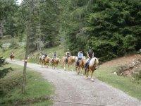 un fantastico trekking nei boschi del Sudtirol