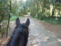 Passeggiiata a  cavallo