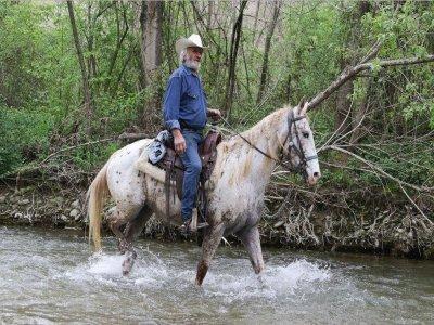 Passeggiata a cavallo a Fano intera giornata