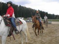 lezione base di equitazione