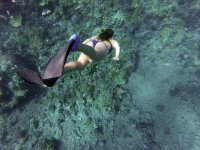 Diving with mask and fins