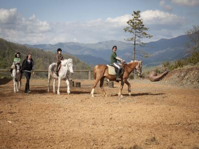 ASD Silverado Equestre