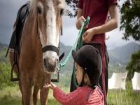 insegnamo ai piú piccoli la cura del cavallo
