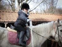 perchè l'equitazione è per tutti