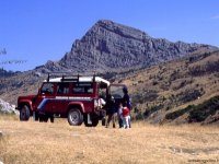 The Pollino in off-road vehicles