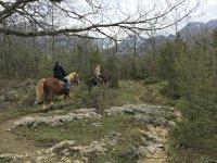A cavallo tra i boscho