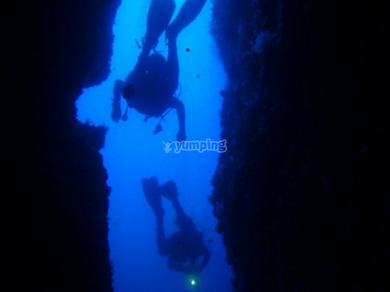 Diving in the blue