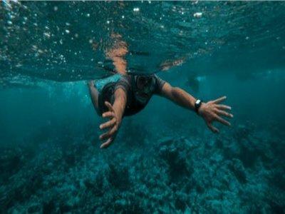 Tour di snorkeling nel Golfo Paradiso di 1 ora