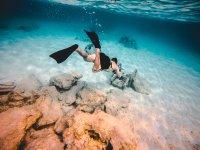 Snorkeling in Genoa
