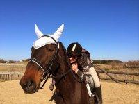 Pronti per l'avventura a cavallo